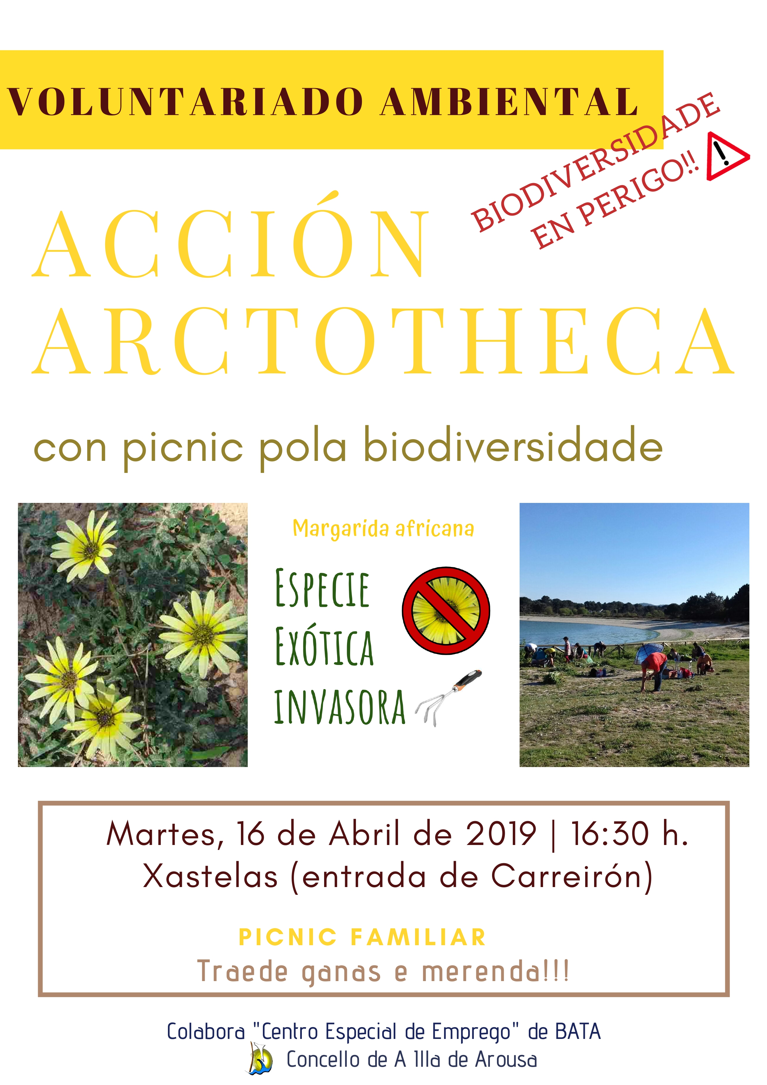 Repetimos o picnic pola biodiversidade! Acción Arctotheca